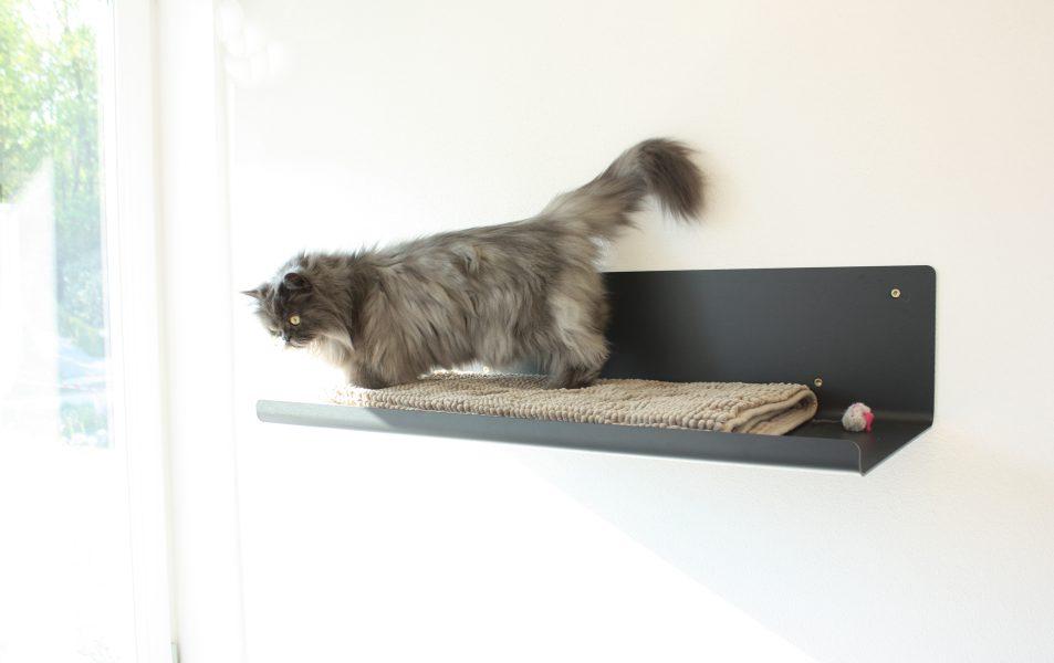 Katzenliegebrett straight schwarz_pet-board_Design Sebastian Frank